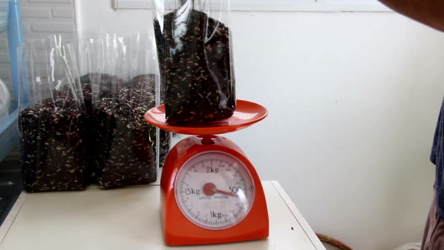 man contain rice berry in plastic bag on weight scale video