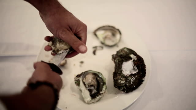 Man cut up oysters in the kitchen video