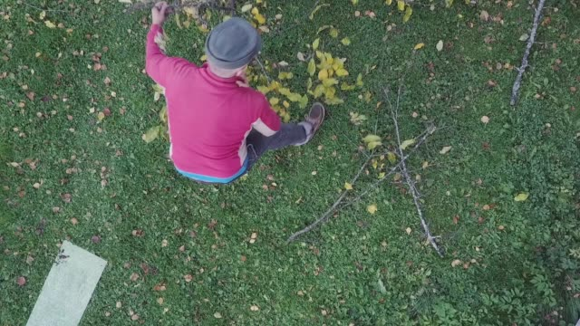 man cutting branches - albero caduto video stock e b–roll