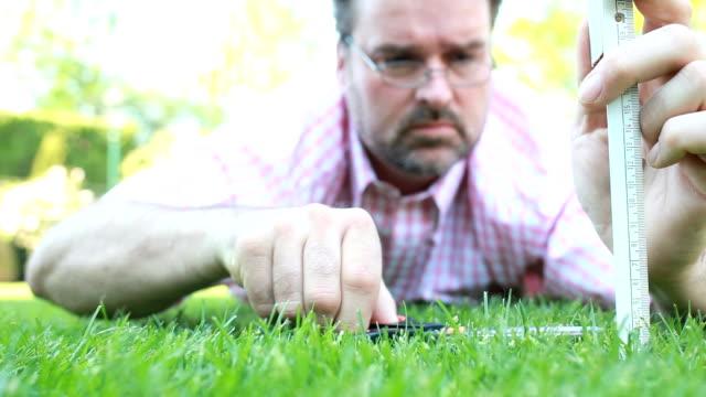 uomo taglio erba - perfezione video stock e b–roll