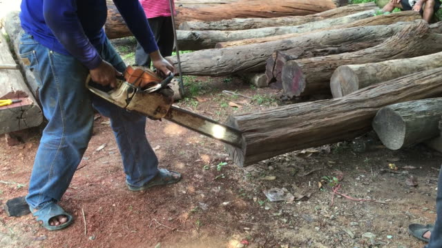 Man cutting log wood with chainsaw video