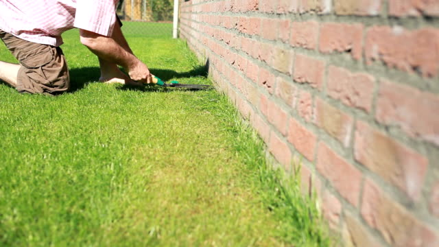 Man cutting the grass garden lawn video