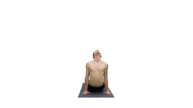 man doing yoga exercise downward and upward facing dog pose, adho mukha svanasana (sun salutation pose) and twisting torso on white background - tułów filmów i materiałów b-roll