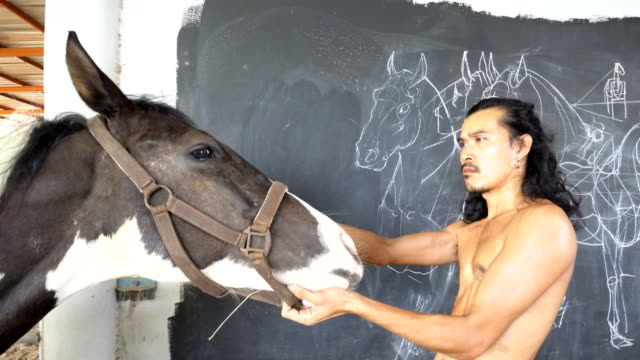 man drawing, designing a horse on the black wall man drawing, designing a horse on the black wall obedience stock videos & royalty-free footage