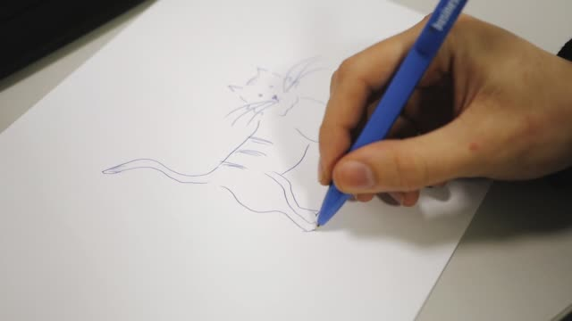 Man draws a cat on paper