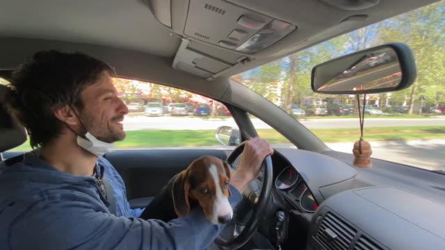 stockvideo's en b-roll-footage met mens die door stadsstraten met beagle in zijn overlapping drijft - mirror mask