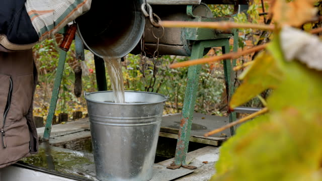 Man drops chain with bucket into rustic well to draw water. Dirty water. video