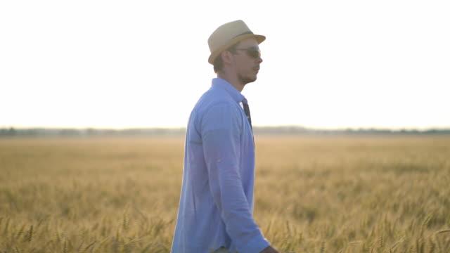 小麦畑を歩いている帽子をかぶった男の農家。 ビデオ