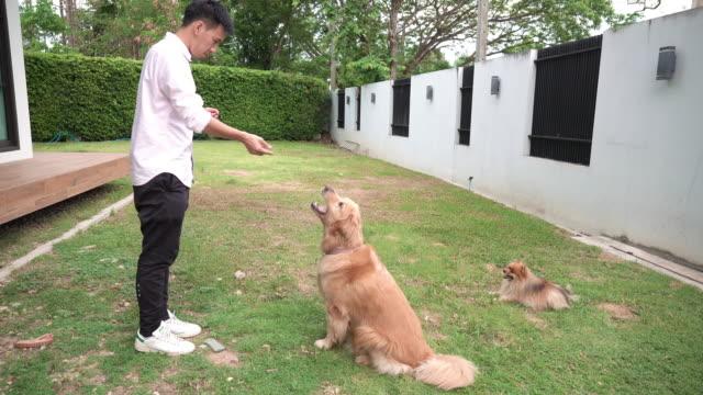 Man feeding dog food with him dog.