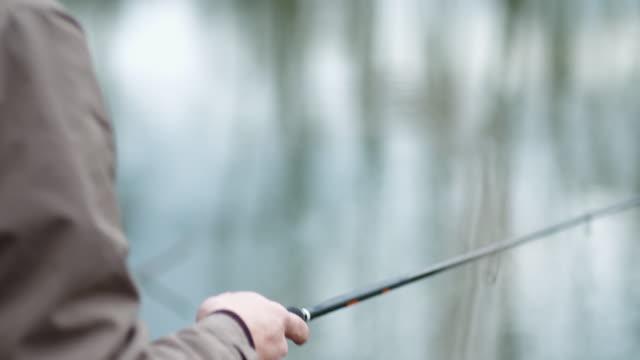 man fishing. fisherman holding fishing rod in hands. - żabnicokształtne filmów i materiałów b-roll