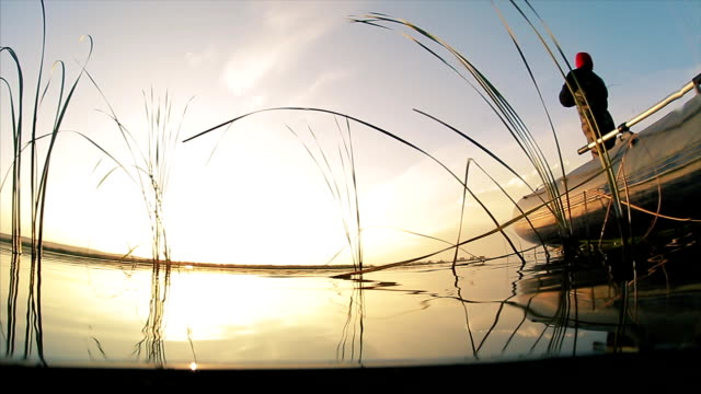 uomo che pesca dalla barca - acqua dolce video stock e b–roll