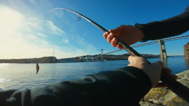 POV man fishing in the sea: catching a fish