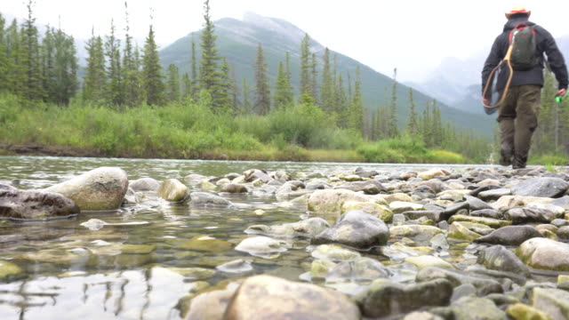 Man fly fishing in mountain stream, below mountains  fishing rod stock videos & royalty-free footage