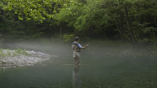 Man Fly Fishing in Vermont Fly-fishing, Vermont, New England-USA, Trout, Fishing, Camping, Freshwater Fishing, Outdoor Pursuit freshwater stock videos & royalty-free footage
