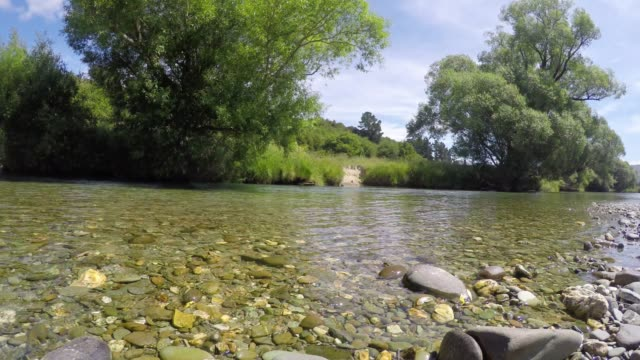 mann-fliegenfischen am mataura river in southland region der südinsel von neuseeland - süßwasserfisch stock-videos und b-roll-filmmaterial