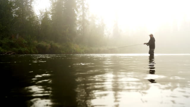 Man Fly-Fishing in a River Enveloped  by Fog video