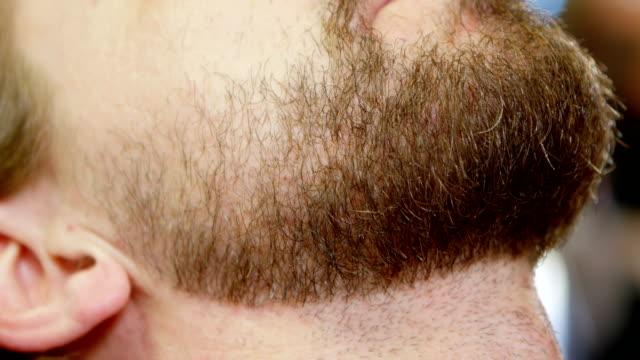 man få skägget trimmat med sax 4k - skägg bildbanksvideor och videomaterial från bakom kulisserna