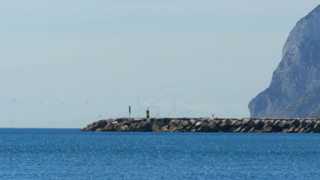 Man goes to the Lighthouse, around it Flies a Flock of Seagulls on the Beach. Gibraltar. Spain video