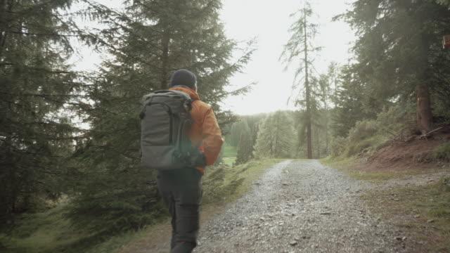Mann, Wanderungen und Ausflüge in Wald bei Sonnenuntergang – Video