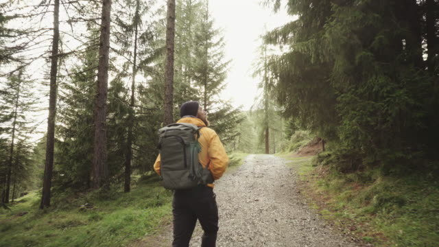 man hiking and exploring forest area - trekking video stock e b–roll