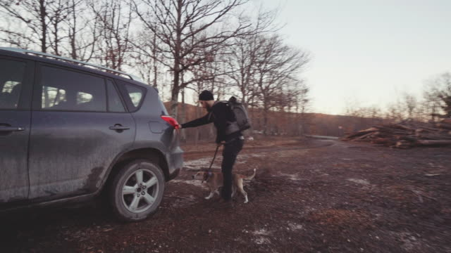 Man hiking with dog in a forest area at sunset video