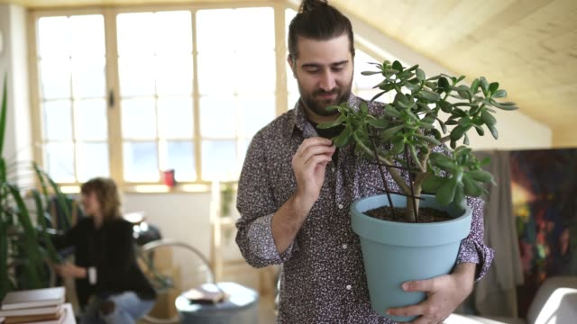 Man holding a flowerpot during moving house Young hipster man holding a flowerpot with plant, looking at plant and smiling, woman behind him packing boxes flower pot stock videos & royalty-free footage