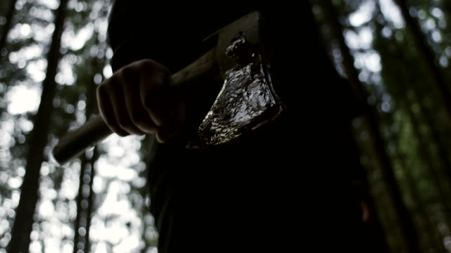 Man Holding Hatchet With Blood Man Holding Hatchet With Blood In the Wood amphibian stock videos & royalty-free footage