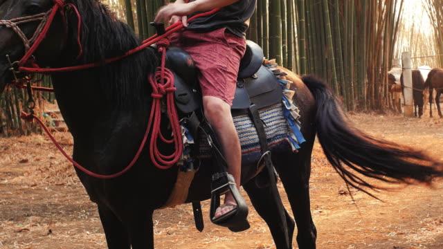 uomo a cavallo al tramonto - attività equestre ricreativa video stock e b–roll