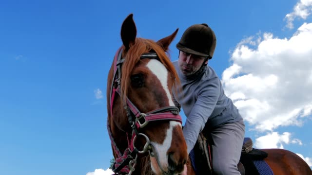 Man in helmet sitting on horse in front of the sky video