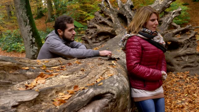 man in love asking desperately sorry to his girlfriend crying in the forest - chiedere scusa video stock e b–roll