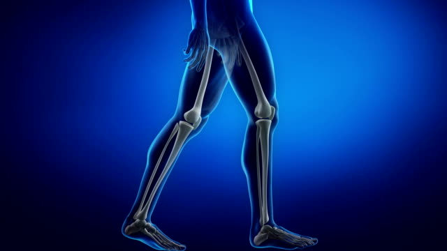Man in motion focused on knee Anatomy 3D concept knee stock videos & royalty-free footage