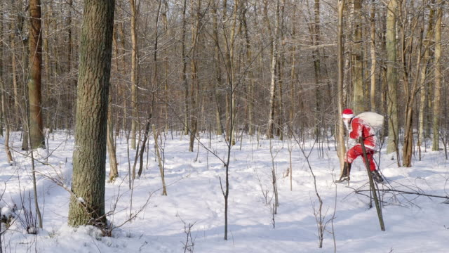 man in santa claus costume walks in the wood with bag full of gifts. - santa claus tiptoeing video stock e b–roll