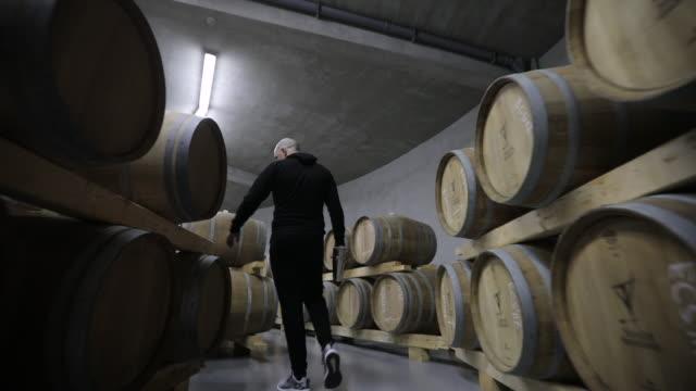 uomo in cantina pieno di botti di vino - barile video stock e b–roll