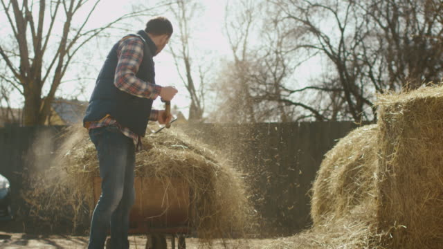 vidéos et rushes de l'homme est le nettoyage un yard de la ferme de foin avec une fourche sur une journée ensoleillée. - foin
