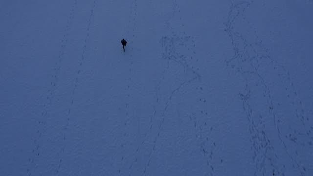 AERIAL Man Jogging Across The Snowy Field video