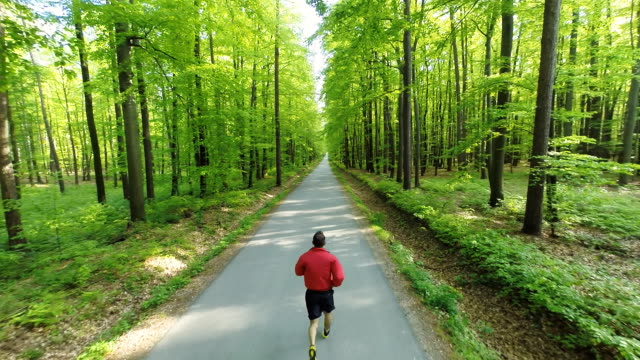 HD HELI: Man Jogging On A Road Through Forest video