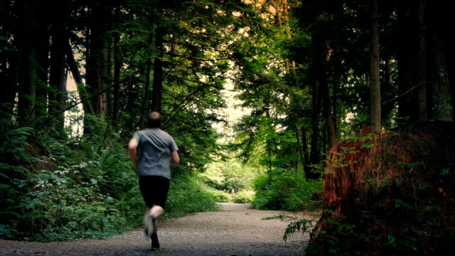 mann joggt auf kiesweg durch national park - vancouver kanada stock-videos und b-roll-filmmaterial