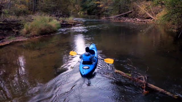 Man kayaking on the forest river video