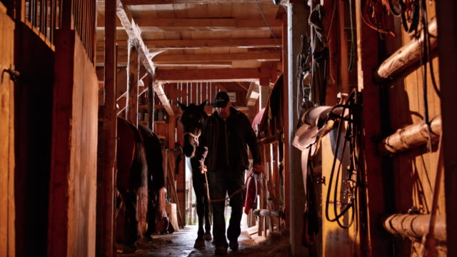 ds man leading his horse into the stall - rancher video stock e b–roll