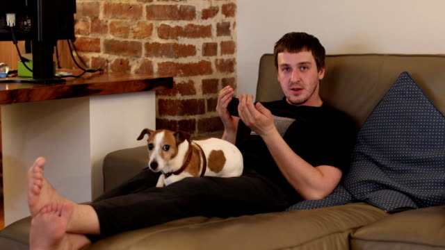 man looking at smartphone sitting on sofa with dog - sorpresa video stock e b–roll