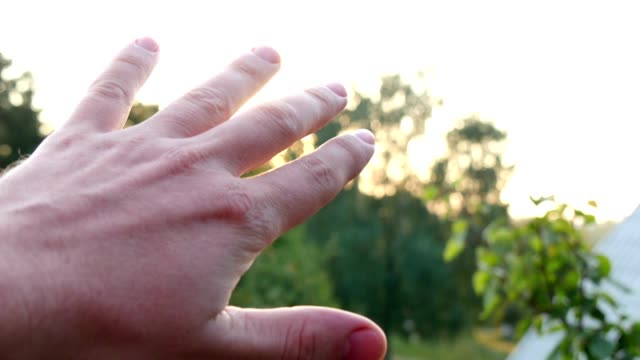 Man Looking To The Sun Through Fingers