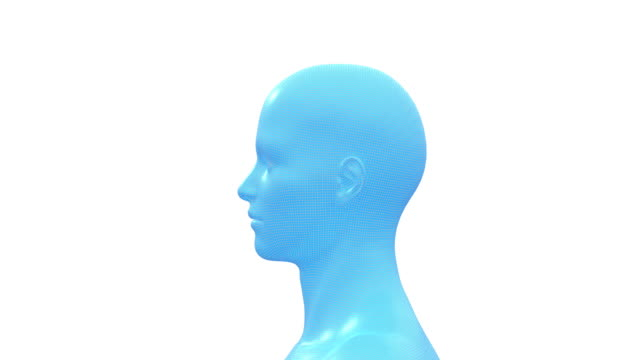 Man, Male Human Head. 3D Wireframe Model, Seamless Loop