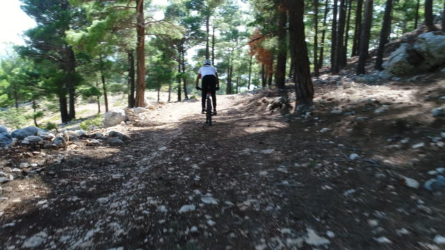 man mountainbiker rides on a sports bicycle on a forest trail. - percorso per bicicletta video stock e b–roll