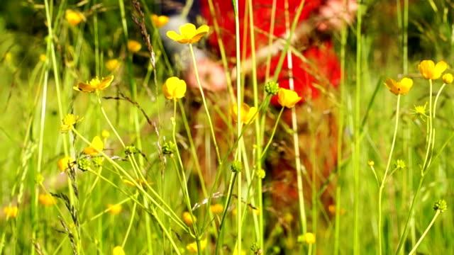 uomo falciare l'erba usando una falce - arto umano video stock e b–roll