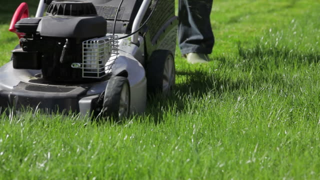 Man mowing the lawn video