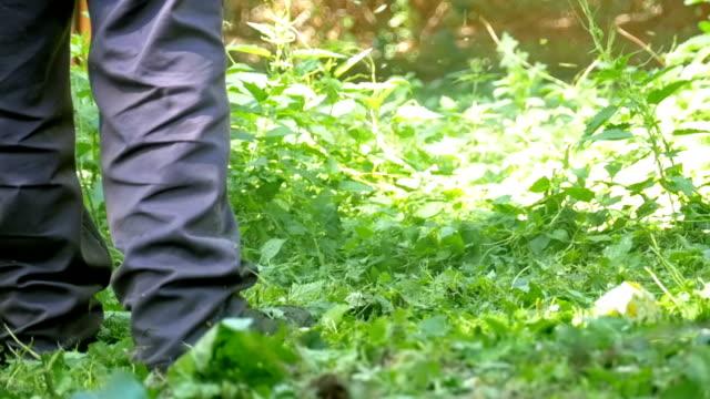 mann mäht rasen mit einem tragbaren rasenmäher in zeitlupe - gärtnerisch gestaltet stock-videos und b-roll-filmmaterial