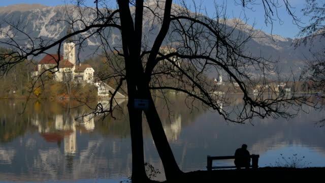 man on a bench on a lake shore - albero spoglio video stock e b–roll