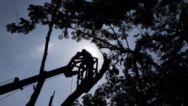 Man On Crane Basket 4k. video