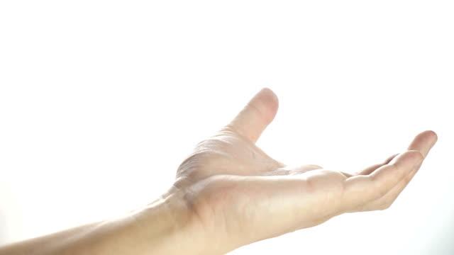 man open hand on white isolated background - avvicinarsi video stock e b–roll