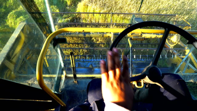 POV of Man operator managing combine harvester during rice, wheat harvest